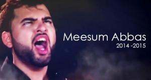 mesum-14-15